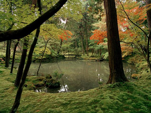 moss-garden-saihoji-temple-kyoto-japan_61103_600x450